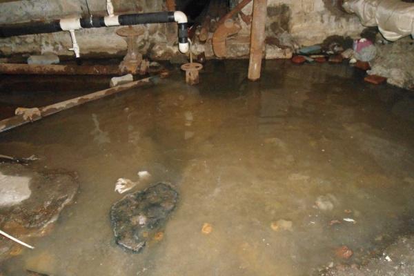 Жиры в трубах, фекалии в подвале! Жильцы дома на Малышева обвиняют «узбечку» в затоплении здания нечистотами