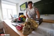 Свердловские учителя отказались от мяса и пересели на общественный транспорт. Педагогам «режут» стимулирующие выплаты