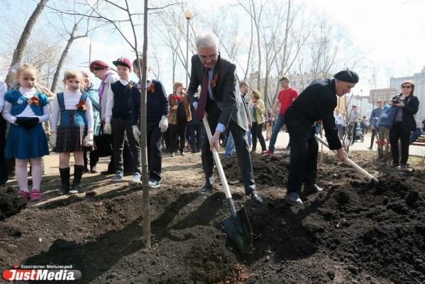 «Для нас важно сделать город лучше, комфортнее, красивее». В парке Павлика Морозова высадили новые деревья