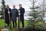 Якоб, Ройзман и Носов прогулялись по Нижнему Тагилу, посадили елку и приступили к созданию резолюции против реформы МСУ