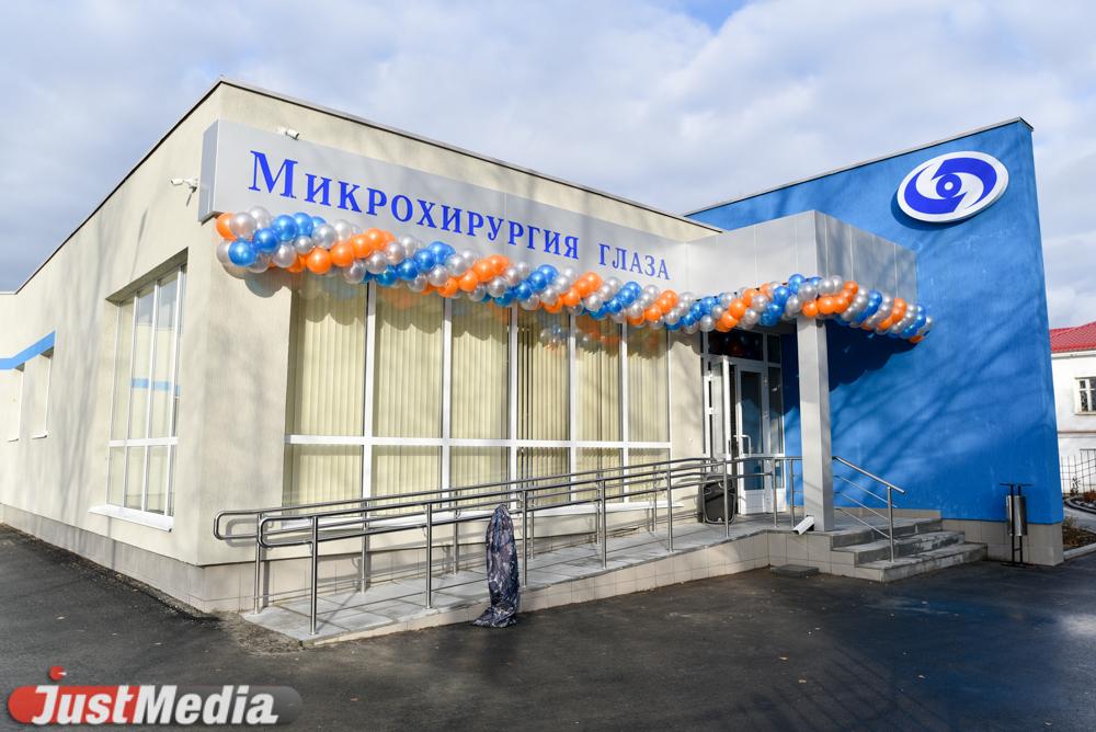 Авито болонка ростовская область