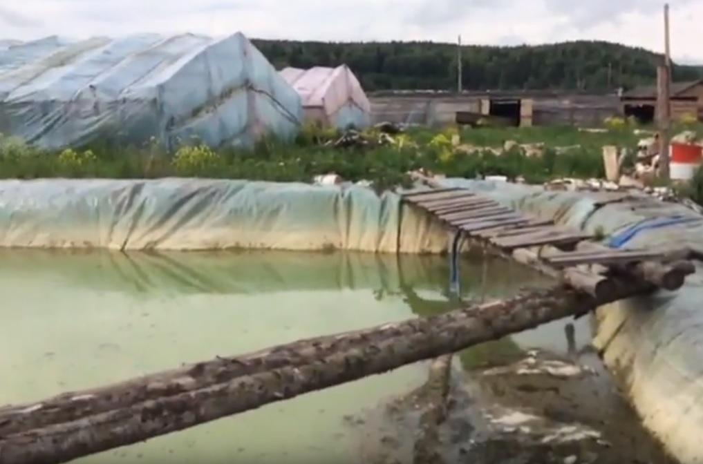 Сельхозземлям Среднего Урала нанесён вред на44,8 млн руб.