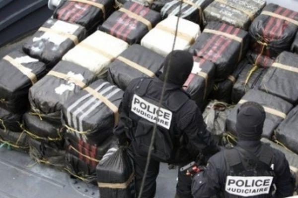 В бельгийском порту в коробках с бананами нашли почти семь тонн кокаина