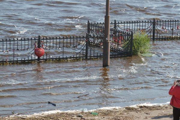 Из подтопленного микрорайона Барнаула эвакуировано более тысячи человек