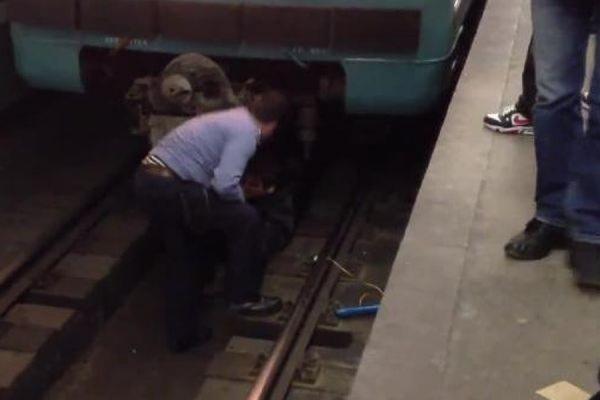 девушки для секс в москве метро новогиреево-ар2