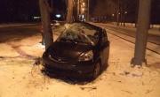 В Екатеринбурге водитель-новичок иномарки врезался в дерево. Пострадали два человека