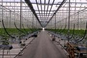 На Урале подготовились к весеннему урожаю