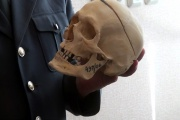Будущим юристам рассказали, как восстановить облик человека по черепу