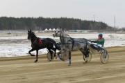 В Свердловской области в выходные пройдет открытие конноспортивного бегового сезона