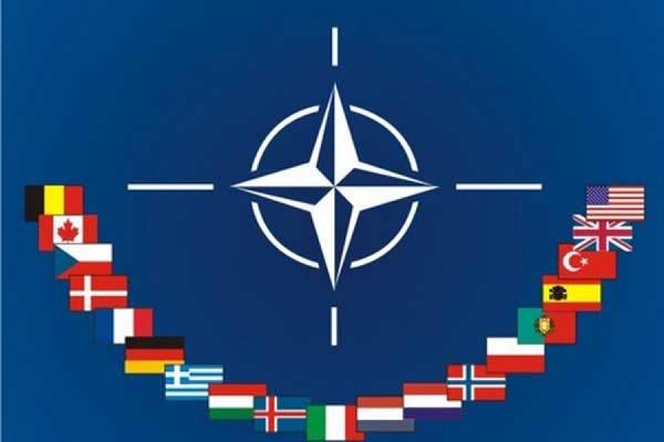Поставленную Латвии технику НАТО могут применить на Украине
