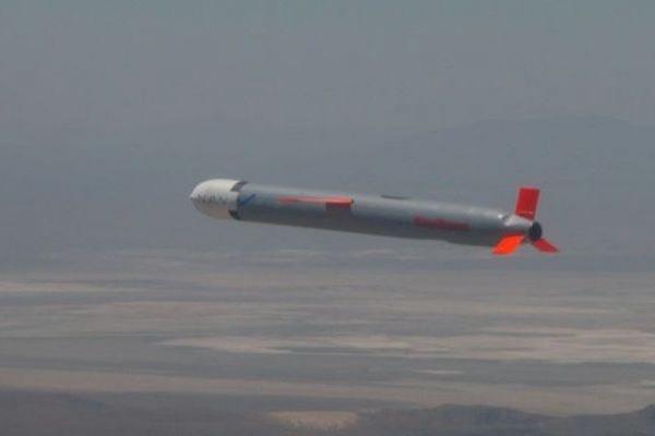 Польша намерена купить у США крылатые ракеты «Томагавк» для своих подводных лодок