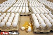 Казус с продажей яйца случился из-за ошибки автомата