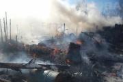 Под Екатеринбургом горел коллективный сад