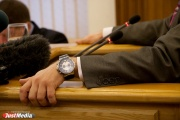 Доходы свердловских депутатов существенно превысили чиновничьи