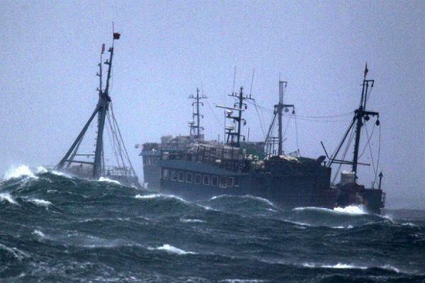 Жертвами крушения траулера «Дальний Восток» в Охотском море стали 56 человек
