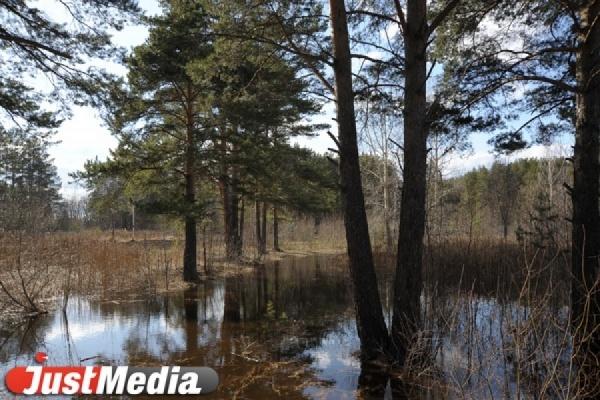 Весенний паводок в Свердловской области начнется на несколько дней раньше