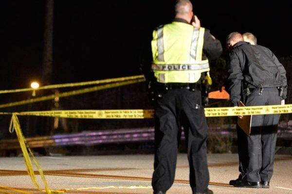 В США 100-летний мужчина зарубил жену топором и покончил с собой
