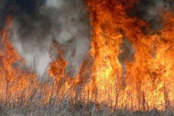 В Минобороны опровергли информацию о пожаре на складе боеприпасов в Забайкалье