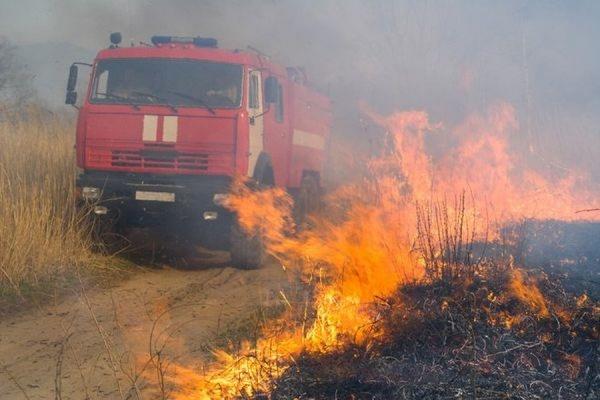 Площадь лесных пожаров в Сибири за сутки выросла в четыре раза