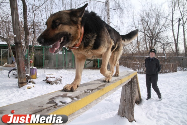 Жительница Каменска-Уральского заявила о грабеже, чтобы присвоить себе рабочий мобильник