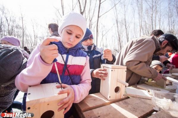 Более сотни скворечников сколотят плотники, орнитологи и жители Екатеринбурга