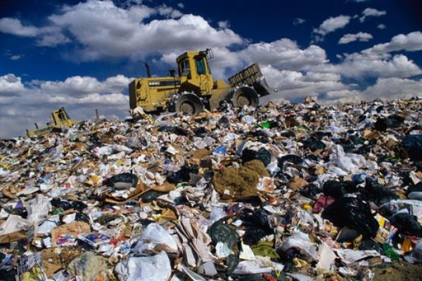 Экология планеты требует скорой помощи