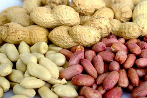 Россельхознадзор запретил ввоз в Россию американского арахиса с 1 мая
