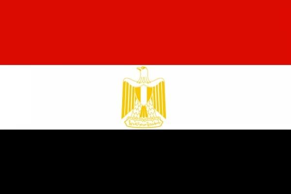 Министр юстиции Египта ушел в отставку