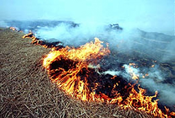 Орловская область готова к пожароопасному сезону 2015 года