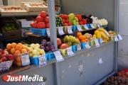 Сельскохозяйственная ярмарка для садоводов пройдет у ДИВСа в эту субботу