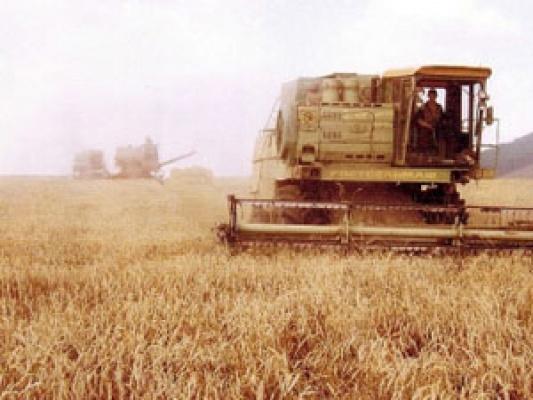 На Орловщине реальные показатели сева превзошли запланированные объемы