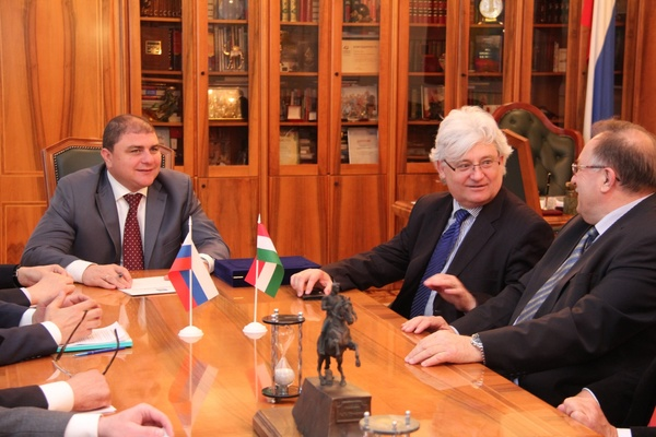 Вадим Потомский встретился с делегацией из Венгрии