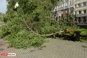 В среду в Свердловской области ожидаются грозы с сильным ветром и градом