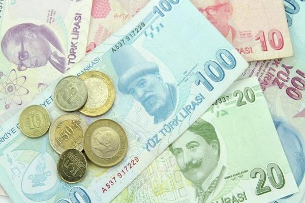 Турецкая лира упала до рекордного минимума