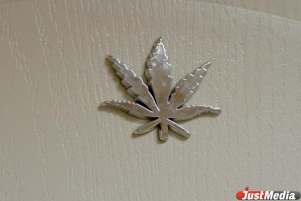 У безработного жителя Алапаевска изъято больше килограмма марихуаны