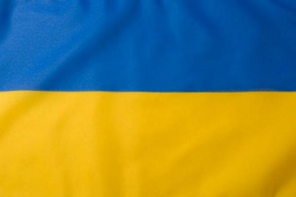 Консульство Украины в Ростове-на-Дону забросали кирпичами и овощами