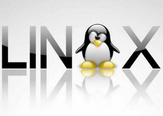 Windows и Unix хостинг – основные различия