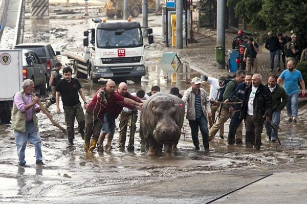 В ночь на воскресенье в Тбилиси прошел ливень с градом и вызвал наводнение