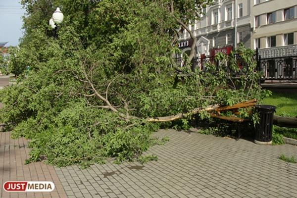 В Екатеринбурге ожидаются грозы с градом и порывистым ветром