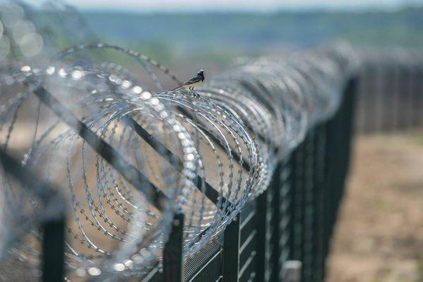 Венгрия намерена возвести четырехметровую стену на границе с Сербией