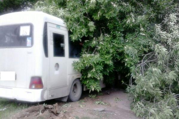 В ДТП с участием пассажирского автобуса пострадали пять человек