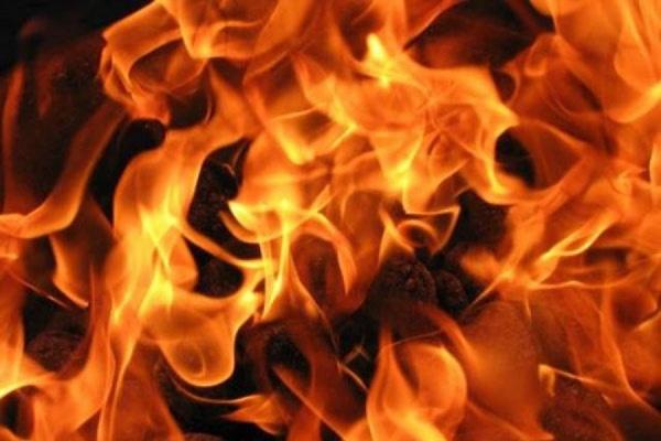 """На территории комплекса лесного хозяйства """"Чернобыльская пуща"""" в зоне отчуждения произошло возгорание сухой травы"""