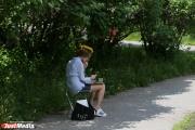 Объединенный парк в районе Дворца молодежи может стать Екатерининским