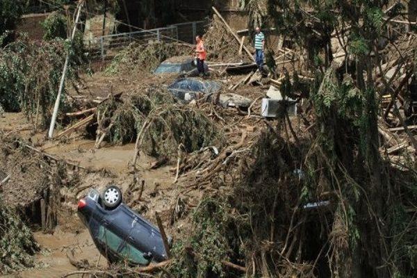 В Тбилиси спасатели нашли труп погибшего при наводнении тигра