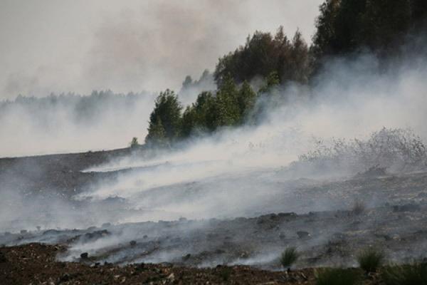 Под Чернобылем горит торф