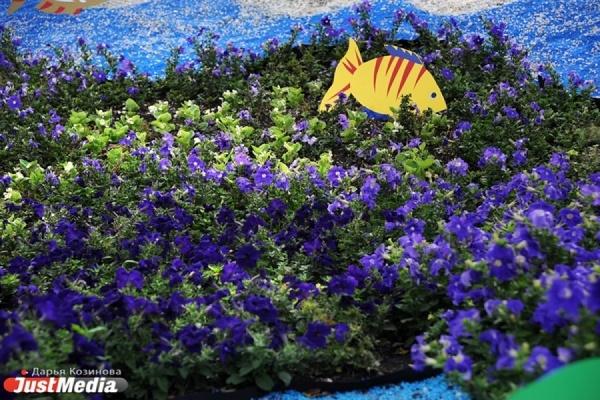 Мэрия украсила Екатеринбург несколькими миллионами цветов