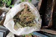 Свердловские наркополицейские изъяли у свердловчанина килограмм маковой соломы
