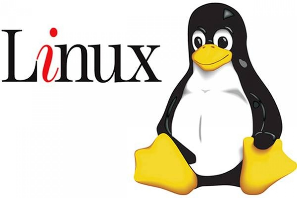 Российские чиновники могут перейти на операционную систему Linux
