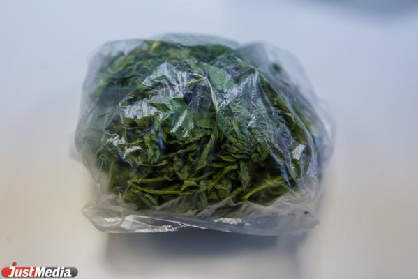 Наркополицейские изъяли у двух свердловчан по килограмму марихуаны