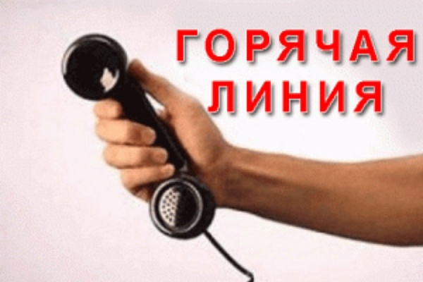 После крупного ДТП с микроавтобусом в Чечне открыли «Горячую линию»
